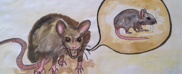 Horridness and RatX