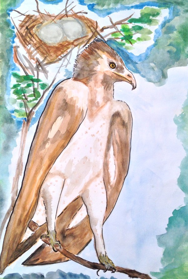Martin the Martial Eagle