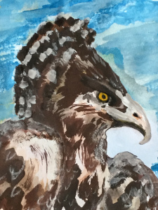 Mars, the martial eagle scout
