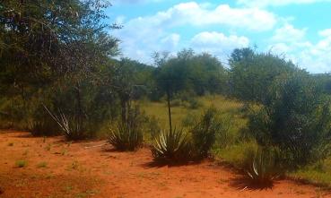 Mmokolodi, Botswana