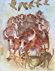 Rescuing the cattle