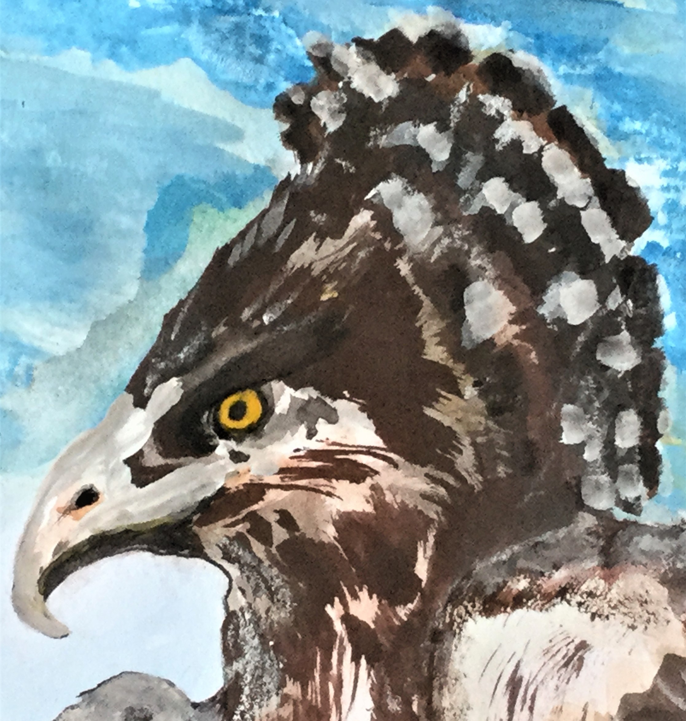 Sunday Short Story – The Martial Eagles Are Nesting – Part 2
