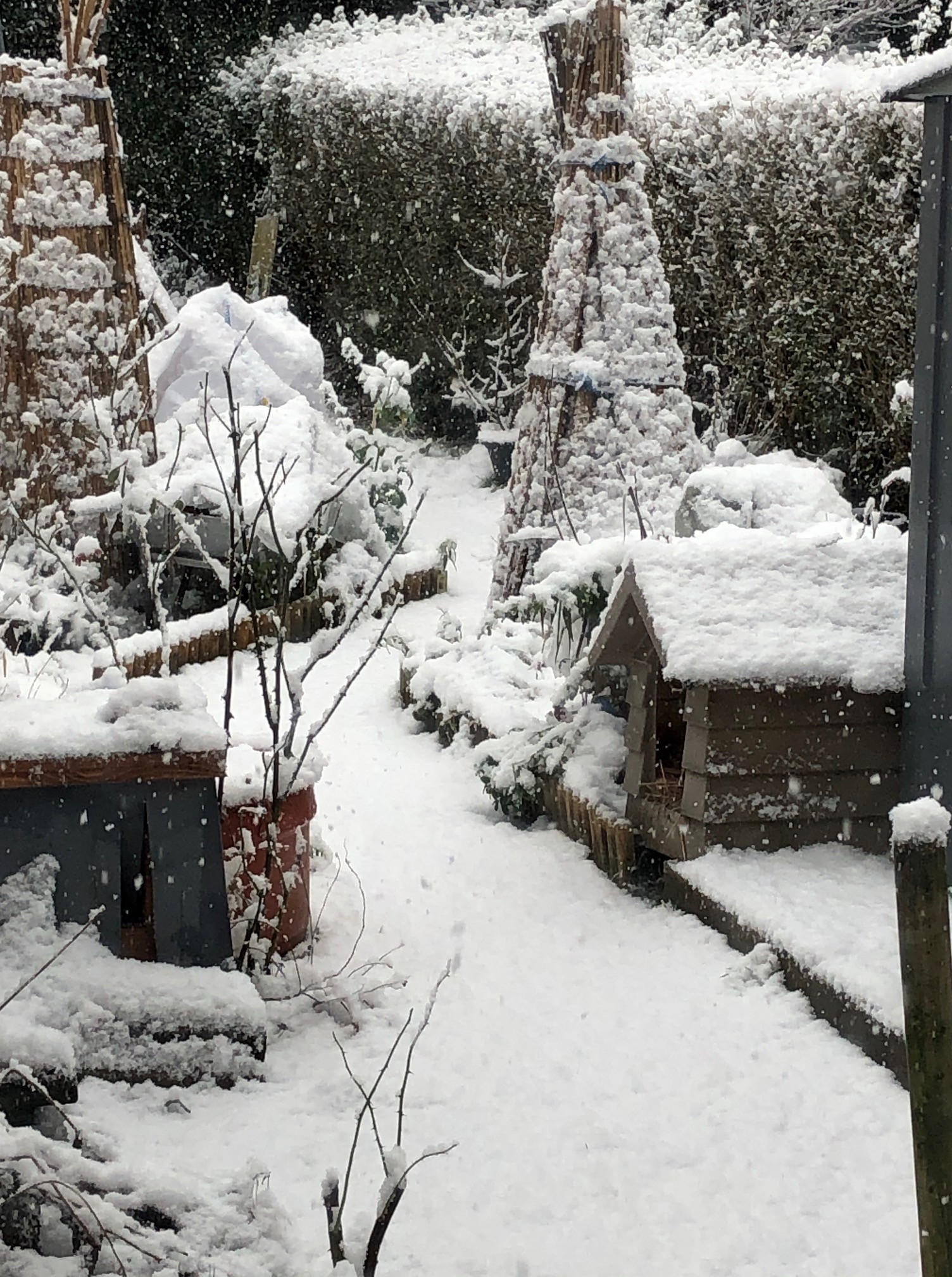 Wonderful Wednesday – #Garden Glimpses – #Snow, #Pebbles #Decking